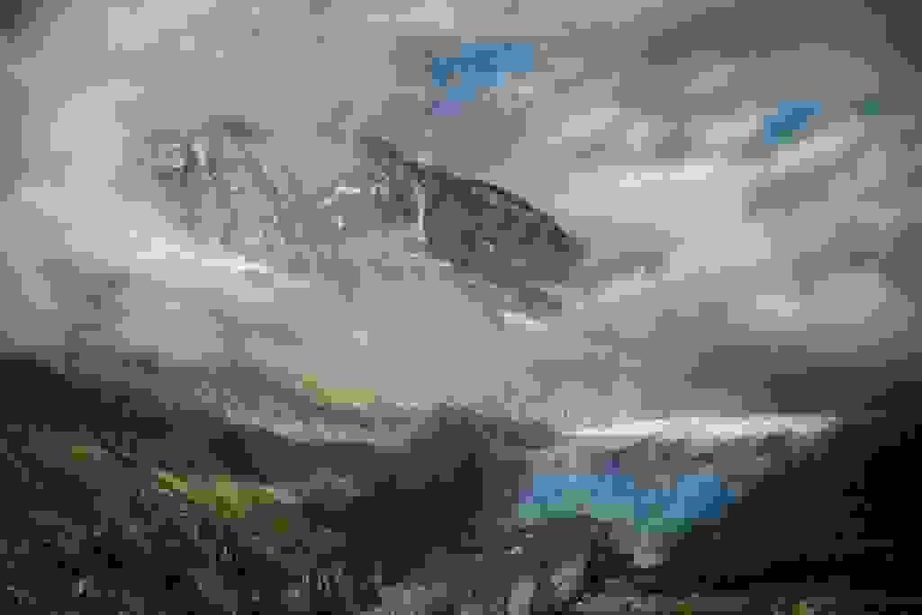 Alps - Mer de glace